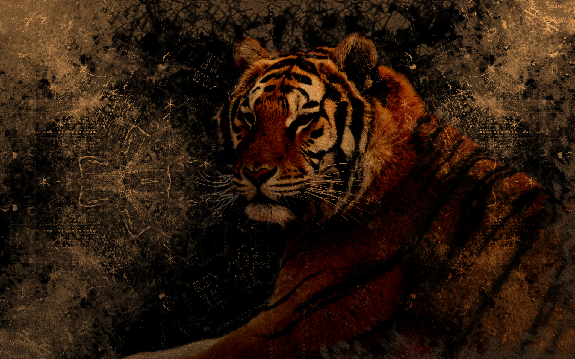 grunge_tiger_wallpaper_by_pimart-d41770m.jpg