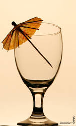 Glass Cup by Qisar