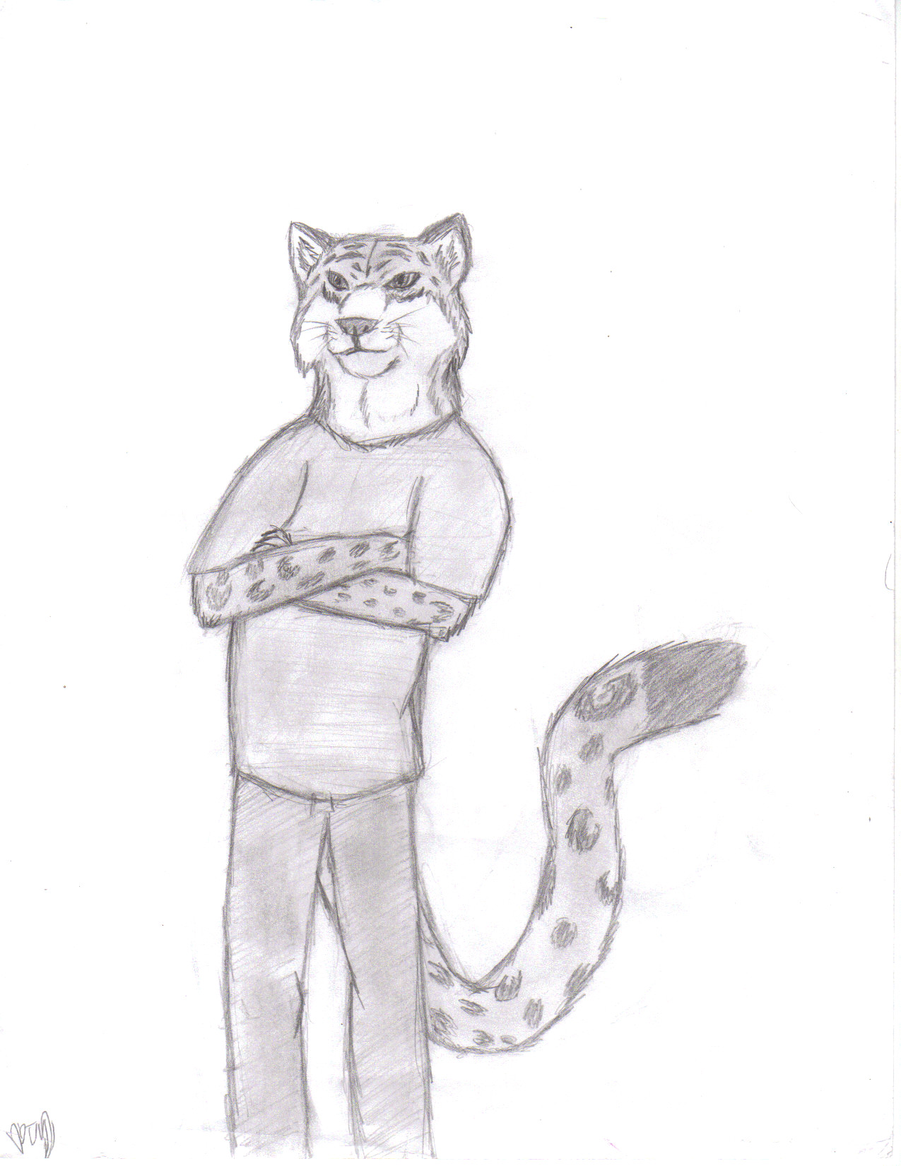 Anthro snow leopard male - photo#35