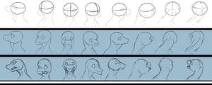 Female Dragon Head Free Reference by InspiredDragons
