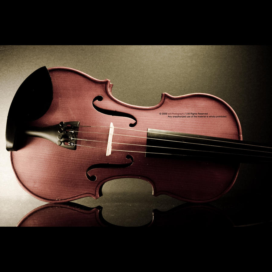 Violin by Waseef