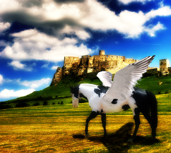 Paint Horse Manipulation By Photoshop Queen