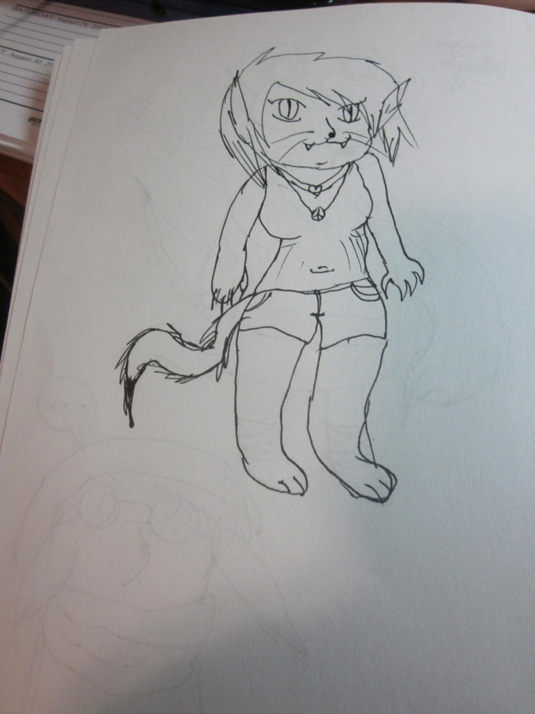 Anthro-cat bandit by Andrea-Perry