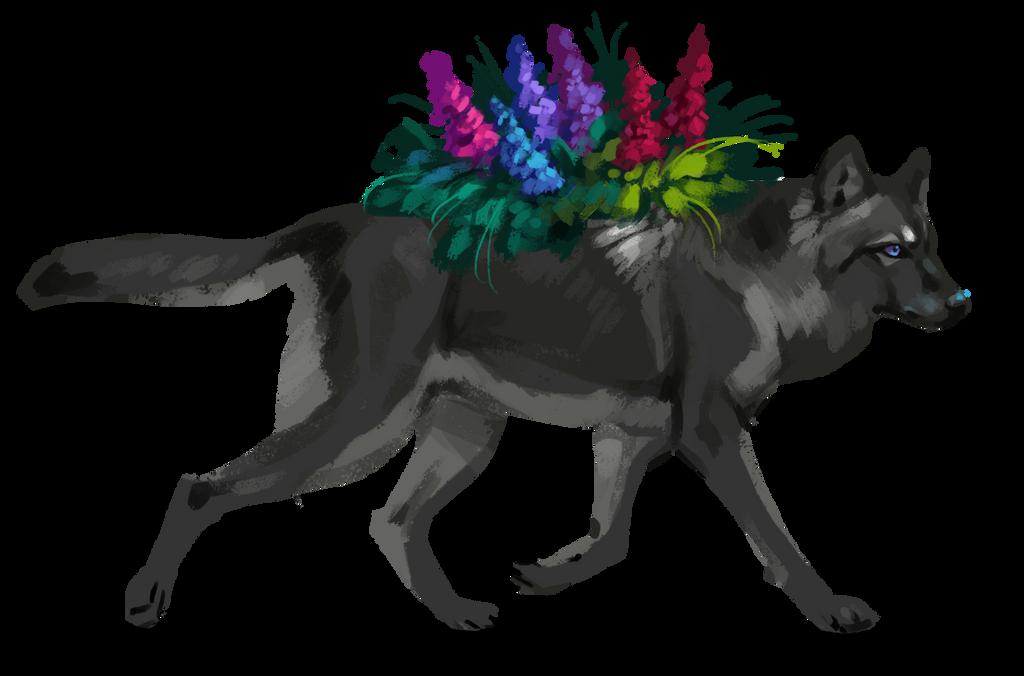 Lupine wolf by itskashmirfam