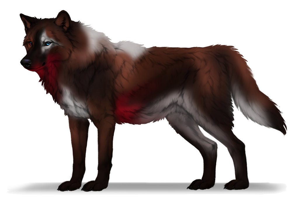 Wolf adopts base round 2 number 9 alt side by itskashmirfam