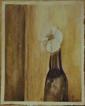 Stength and Hope (Cherokee Rose)