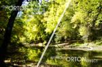 The ORTON effect