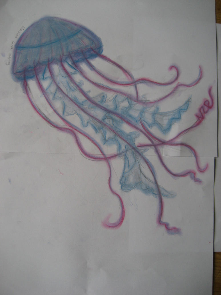 jellyfish 1 its an ugly