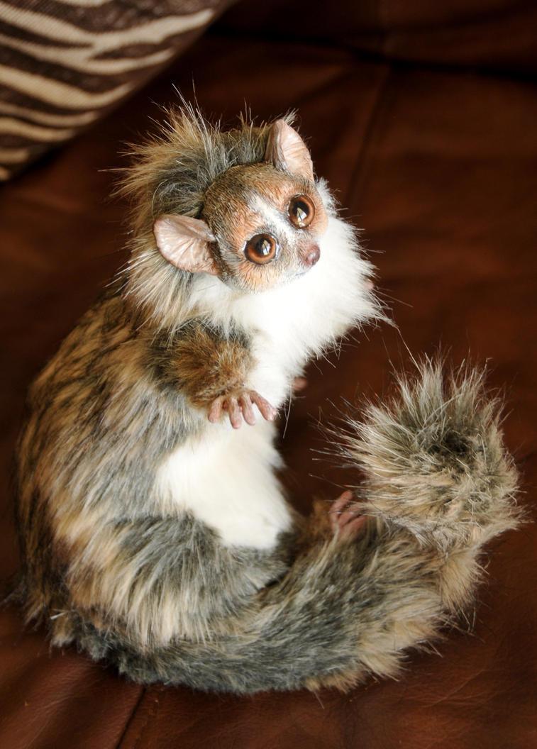 Mouse Lemur by mooki003