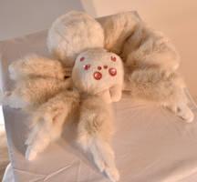 Albino Spider by mooki003