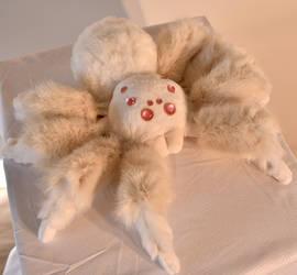 Albino Spider