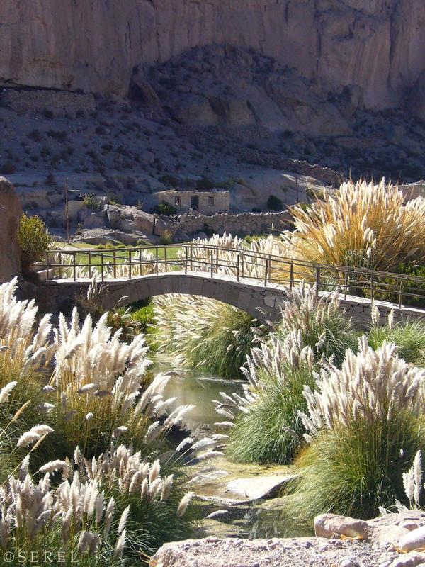 Desert River by serel