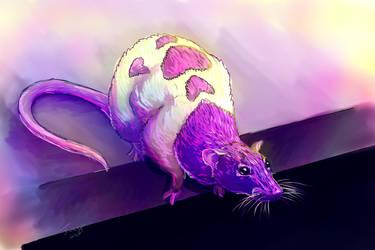Sarah the Rat