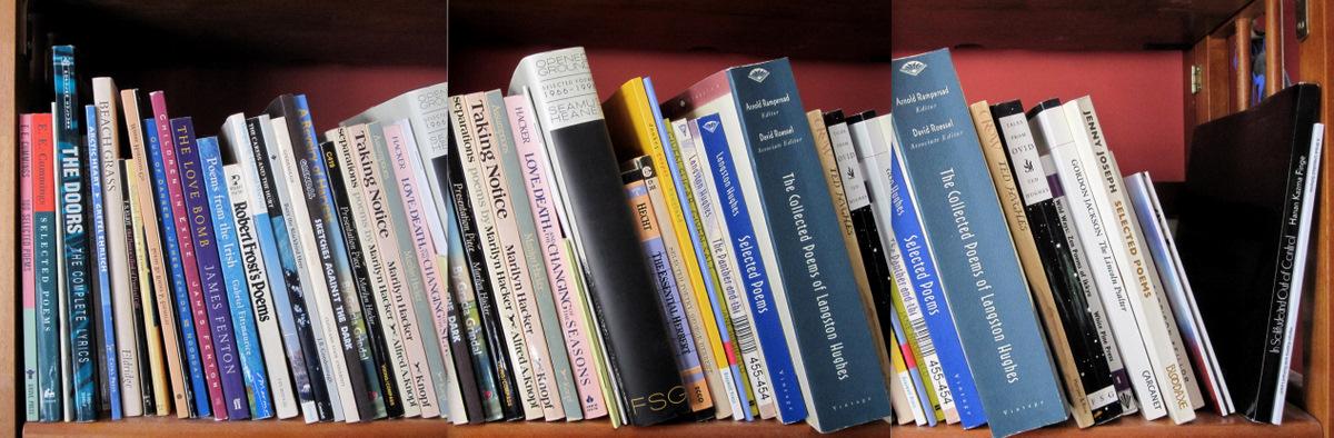 Bookshelf by RichardLeach