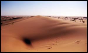 Black Hole in the Desert