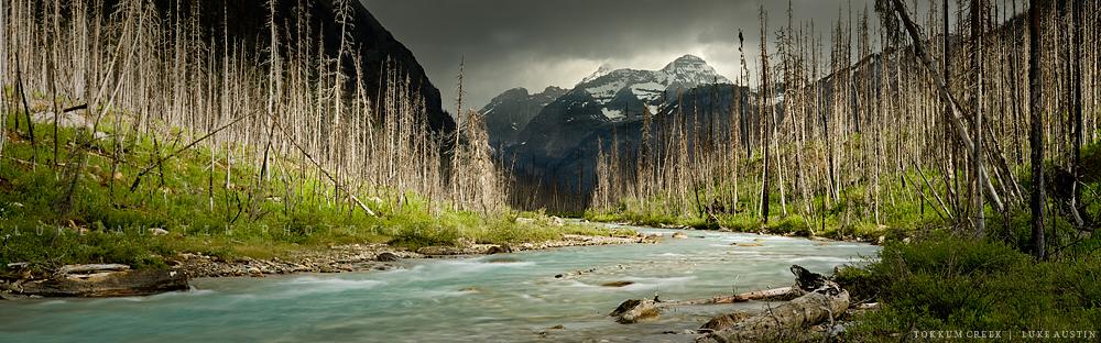 Tokkum Creek - Kootenay N.P by LukeAustin