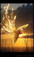 Phoenix by Ahyicodae