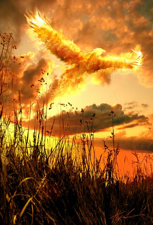 Firebird by Ahyicodae