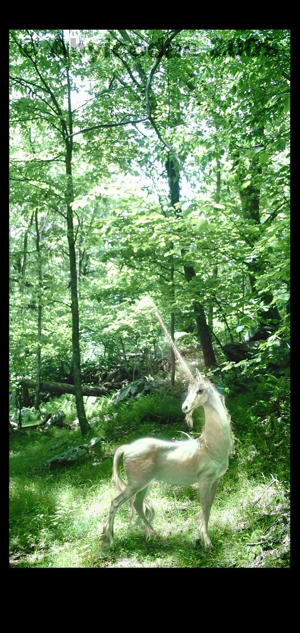 Unicorn in a Glade by Ahyicodae