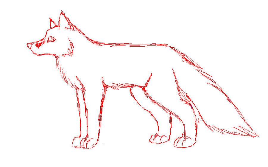 Fox anatomy practice by Silver-Fauxx on DeviantArt