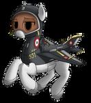 MIG-21 plane pony