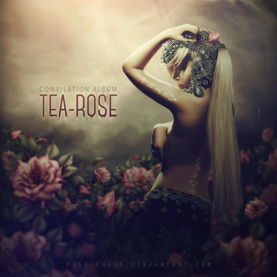 Tea-rose. ALBUM COVER by push-pulse