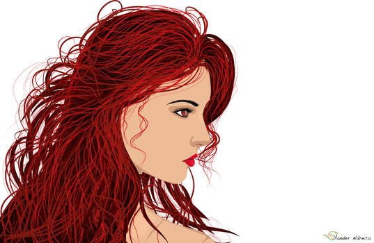 The Red Hair 1