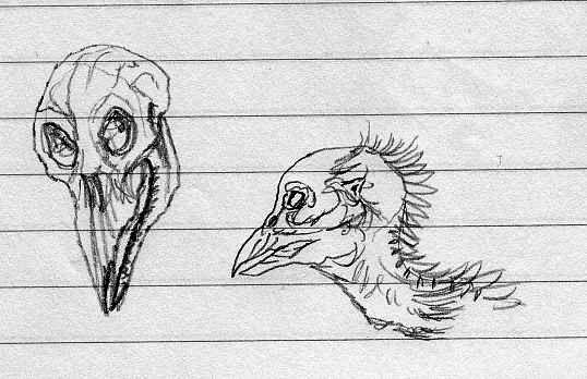 Avian Monster head and skull by CosbyDaf