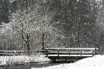 Let it Snow....