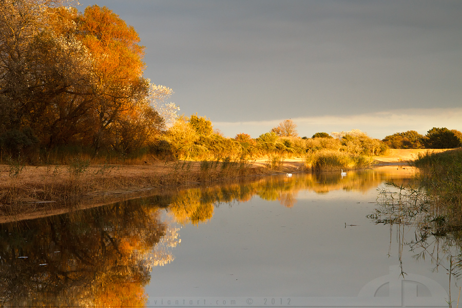 United Colors of Autumn by thrumyeye