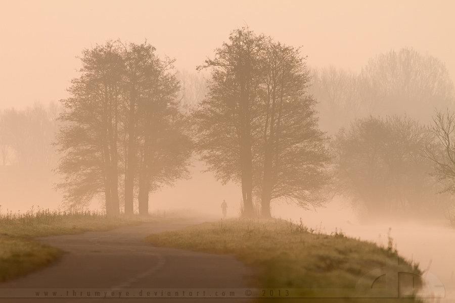 The Lonely Biker by thrumyeye
