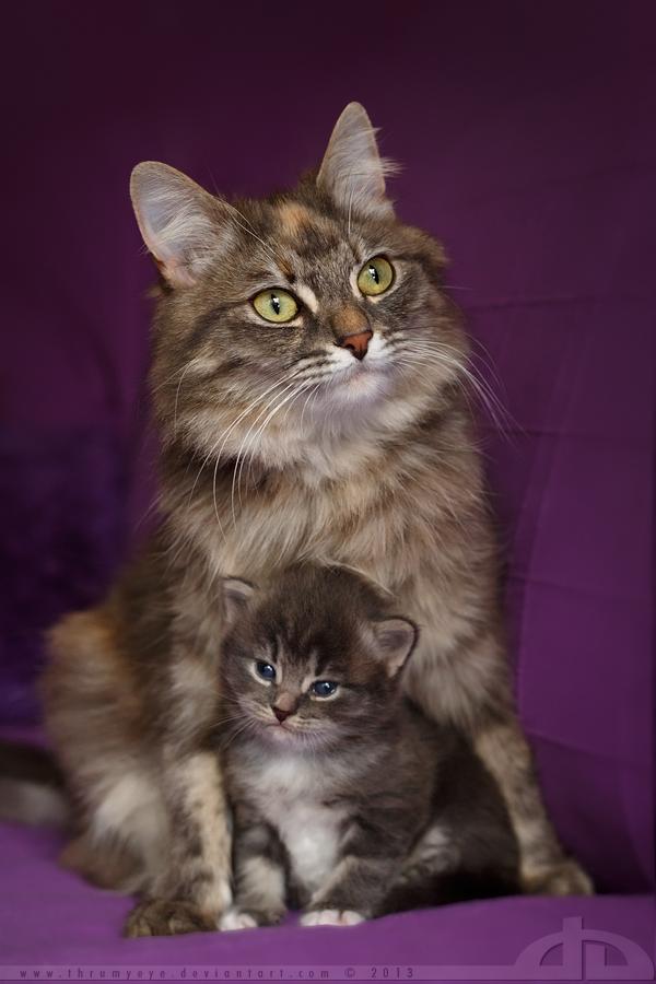 Mouni and the momma by thrumyeye
