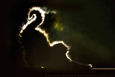 Mouni and The Light by thrumyeye