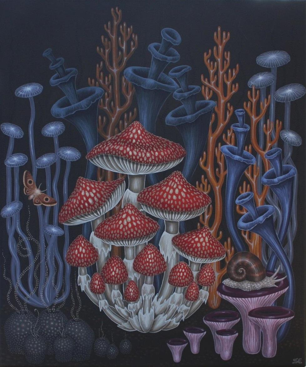 Mushrooms 2 by sofiaeinarsson
