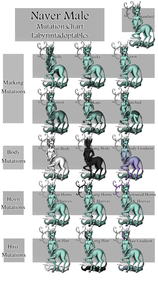 Male Naver Mutation Chart by LabyrinthAdoptables on DeviantArt