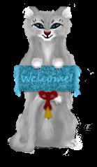 Doorbell cat