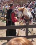 Pretty Palomino Pony