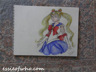 Sailor Moon Badge Entry