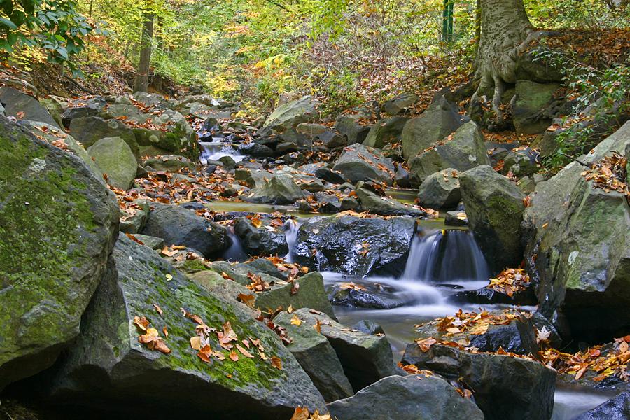 Brandywine Springs by FauxHead