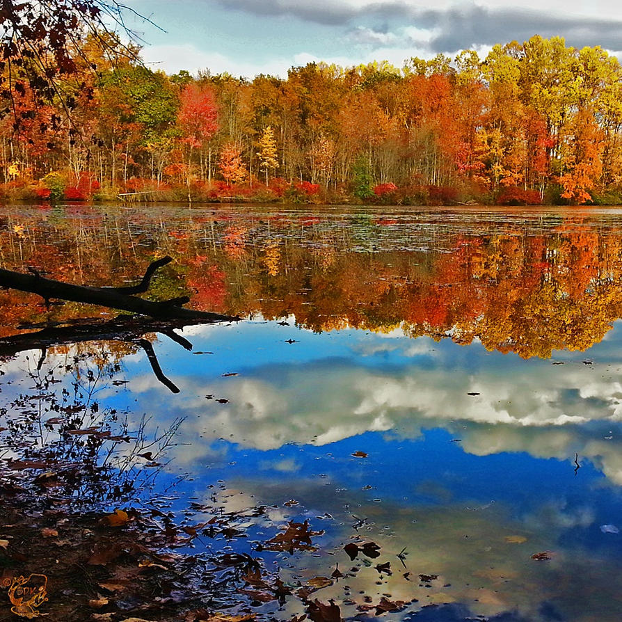 French Creek Colors by FauxHead