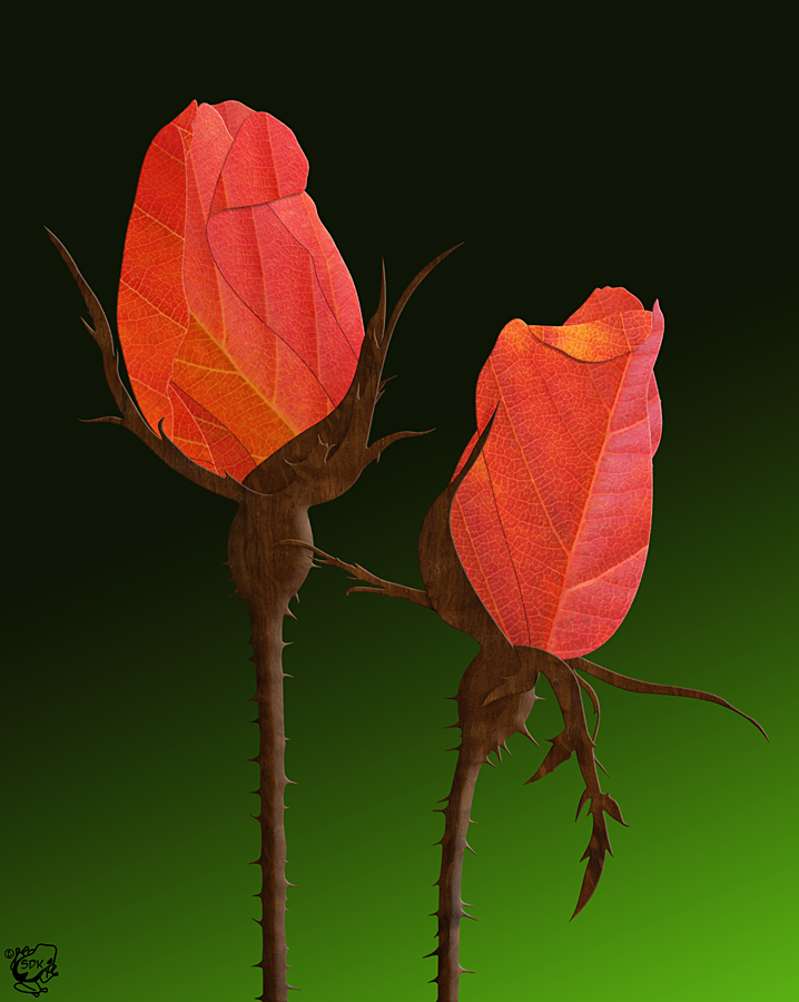 Autumn Rosebuds by FauxHead