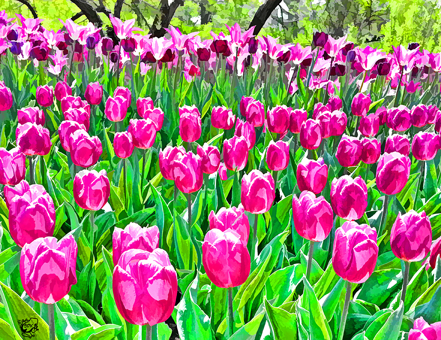 DigiPaint Tulips by FauxHead