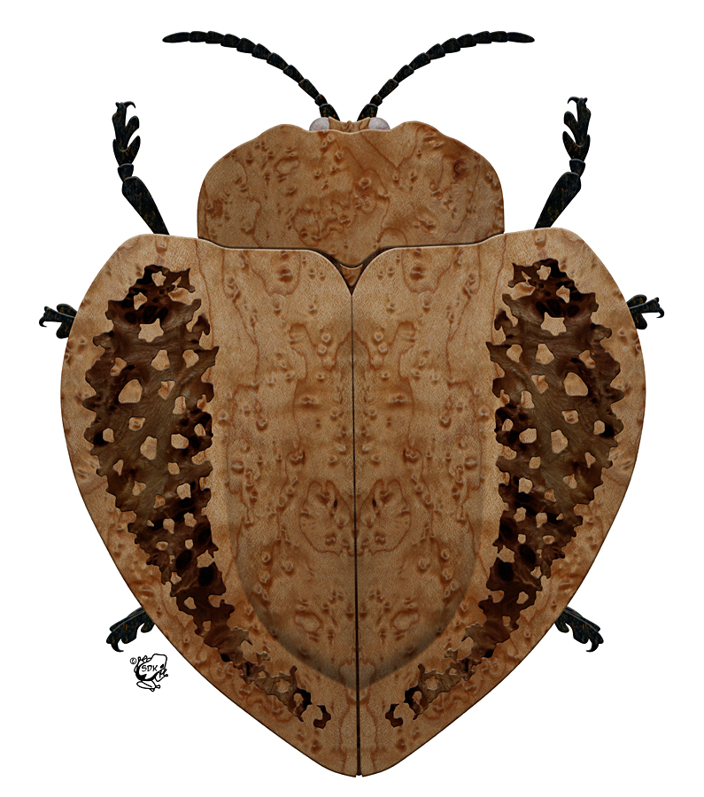 Exotic Wood Tortoise Beetle by FauxHead
