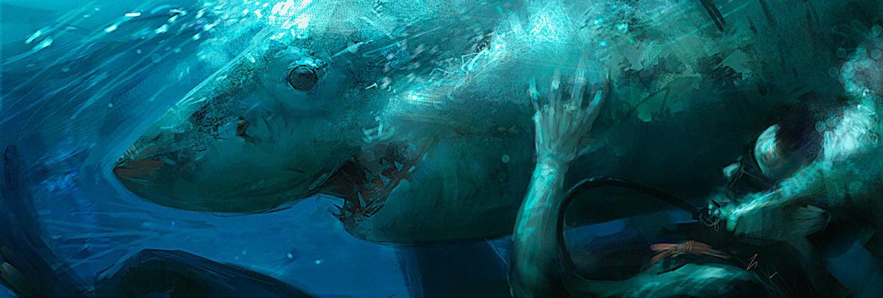 Shark by ChrisRosewarne