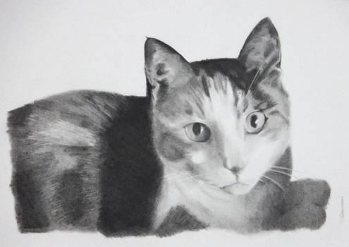 Charcoal drawing of De-arn