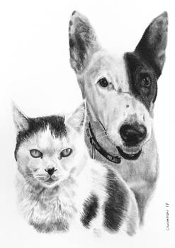Charcoal drawing of Astra and Kobi