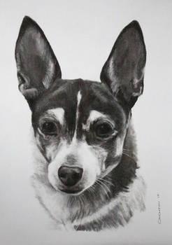 Charcoal drawing of Charkita