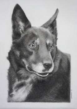 Charcoal drawing of Riddick
