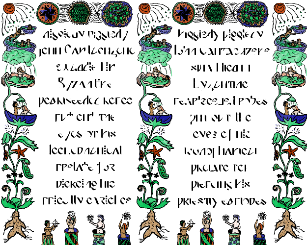 a two-column layout that looks like it's from a medieval manuscript, with intricate and creepy drawings of plants, circle diagrams, and naked women in plumbing all around the margins. The text is in an alphabet that is strangely familiar, but not one you know.