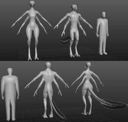 Raharrs anatomy sculpt - 4th version